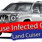 How to clean out a mouse infected car.